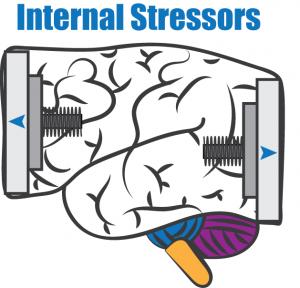 Internal Stressors